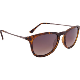 Alpina Zaryn Glasses havana matt